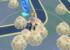 【激アツ】キノココのスポットライトアワー!みんなは大量に砂集めた?
